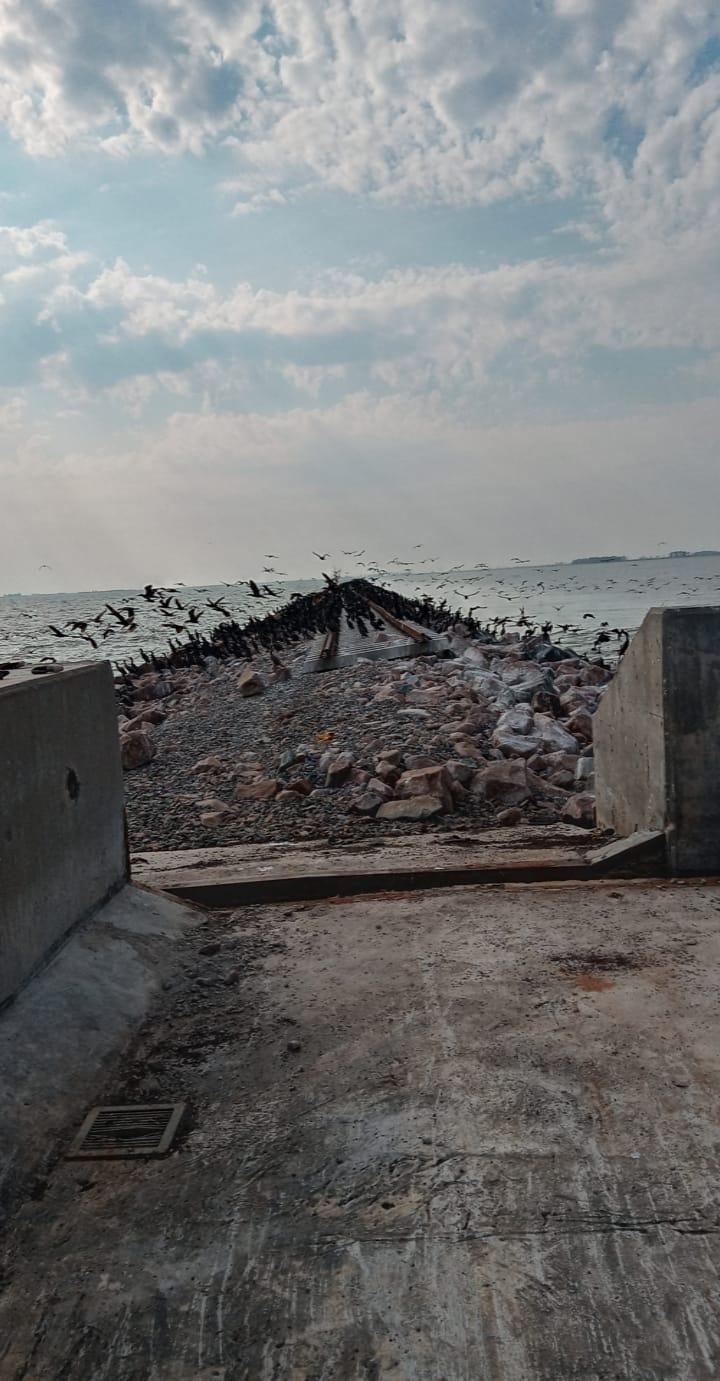 Puente del pedraplén de La Picasa tras las inundaciones de 2017